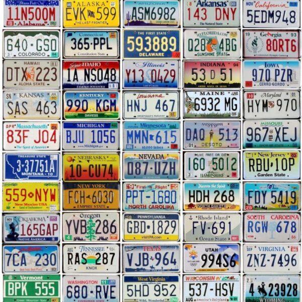 Lot de 50 véritables plaques des états américains