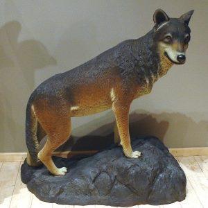 Loup Sur Rocher Statue Grandeur Nature St2526