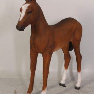 Poulain Marron Taille Reelle Western Equitation Su Ach2