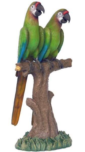Couple De Perroquets Verts Pose Sur Une Branche