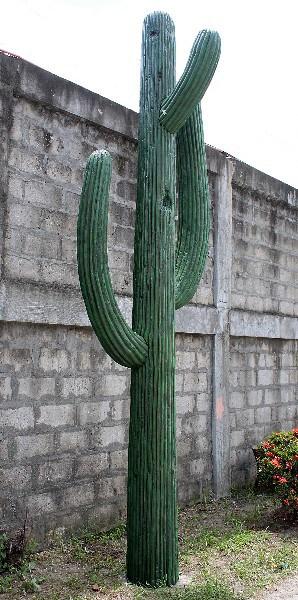 Cactus 4m Su W08 1