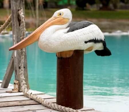 Pelican Couche Sur Poteau Decoration Plage Mer Ocean Statue Grandeur Nature En Resine Et Fibre De Verre Vente Et Location Evenementiel