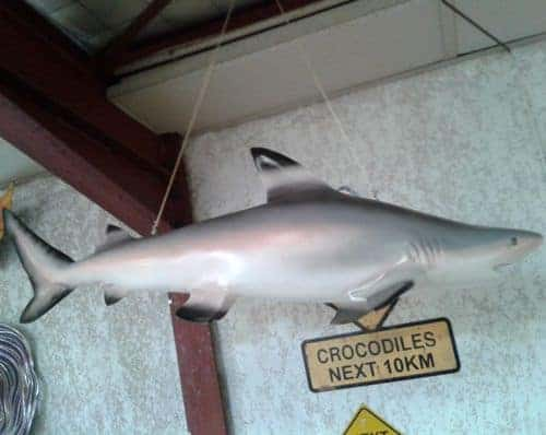 Requin En Resine 1m20