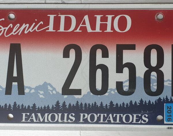 Plaque Immatriculation Américaine Idaho Flat 1