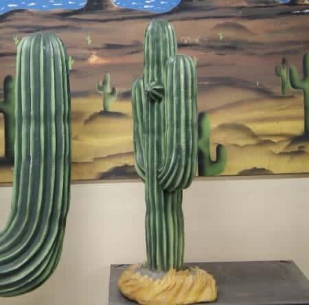 Cactus des plaines d'Arizona