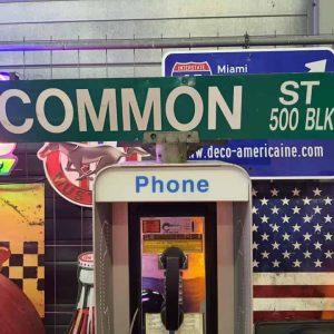 Panneaux Verts Des Rues Américaines 90.5x15.5cm Common St 500 Blk