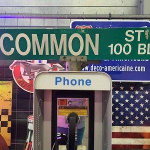 Panneaux Verts Des Rues Américaines 90.5x15.5cm E Common St 100 Blk 1