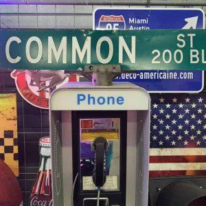 Panneaux Verts Des Rues Américaines 90.5x15.5cm E Common St 200 Blk