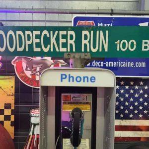 Panneaux Verts Des Rues Américaines 90.5x15.5cm Woodpecker Run 100 Blk