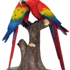 mer Îles plages couple de perroquets multicolores