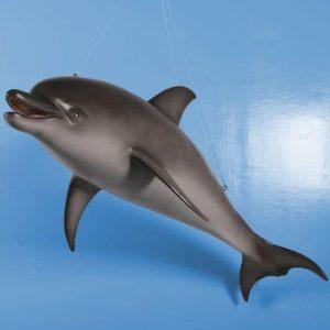 mer iles plages dauphin a suspendre